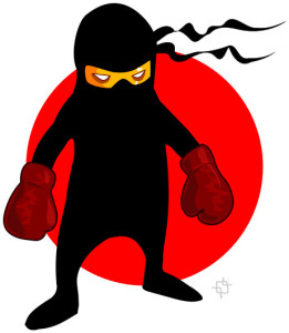 ninja_boxer